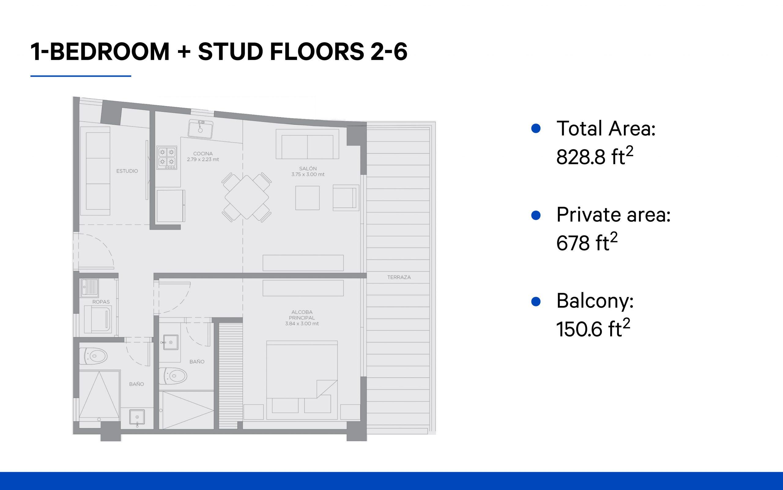 1-Bedroom + studio